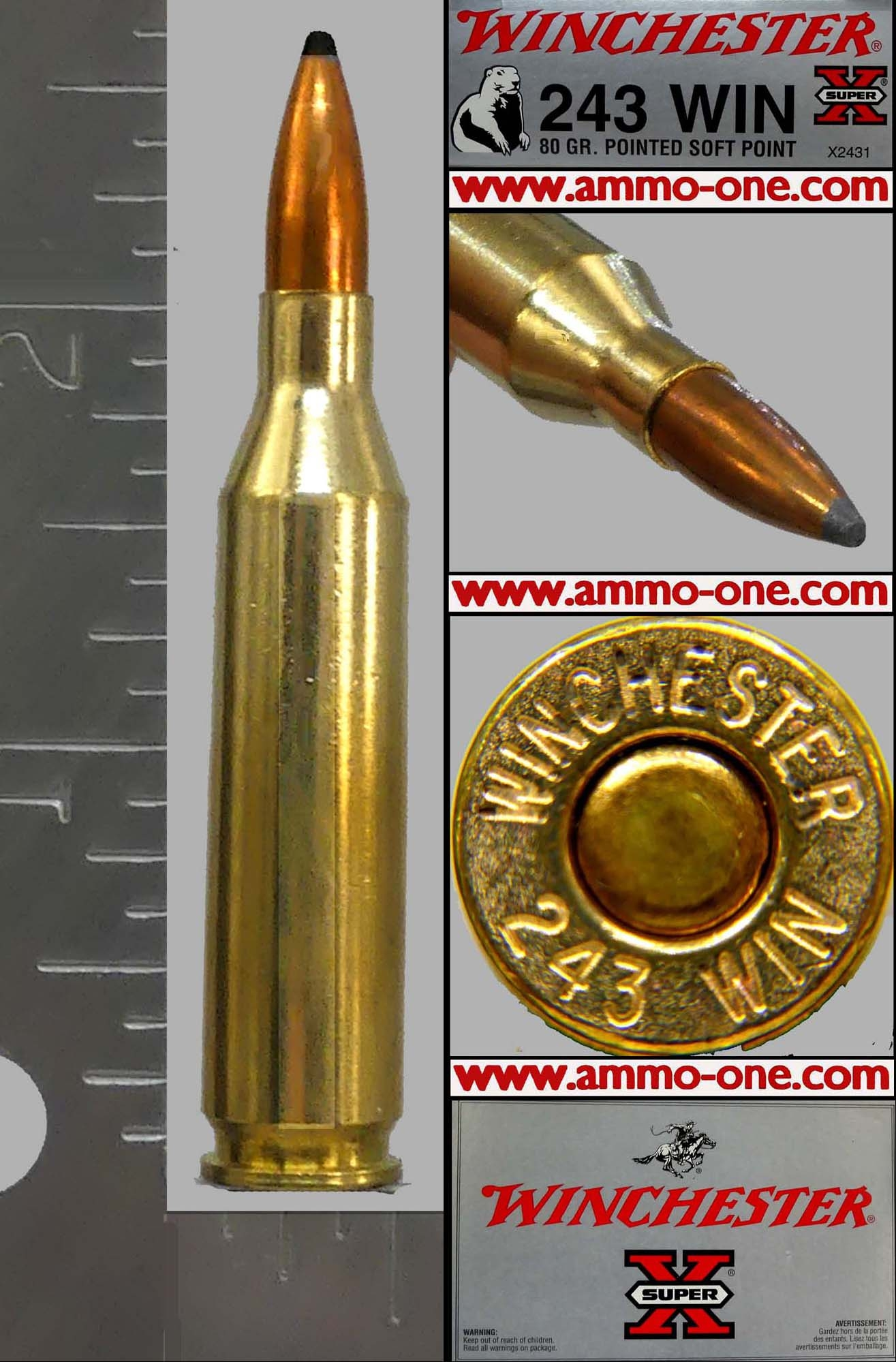 243 Winchester by Winchester, 80g  JSP, One Cartridge not a Box